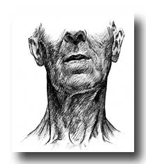 Anatomy of the Neck - Surface Markings Upon the Neck of an Old Man - Front View