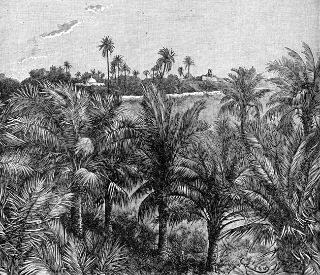 Ancient Mesopotamia - Palm Grove of Chaldea