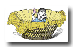 Baby Graphics :: Baby in a Basket