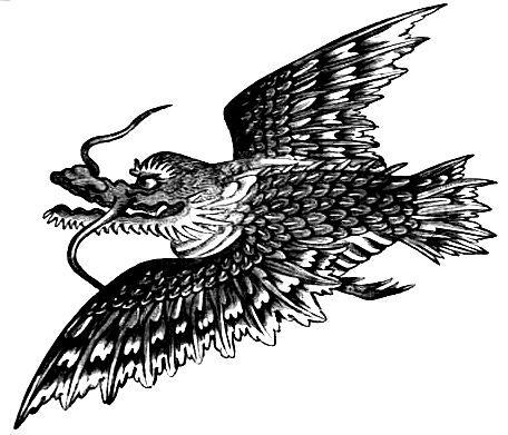 Dragon Drawings - Image 8