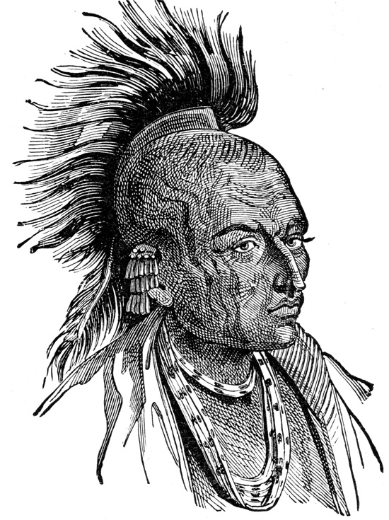 Indian Tribes - Ojibwa Indian