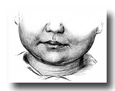 Mouth Anatomy - Dimpled Face of Smiling Child