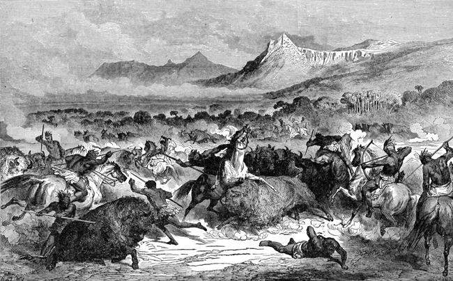 Native Americans - Buffalo Chase of the Delawares