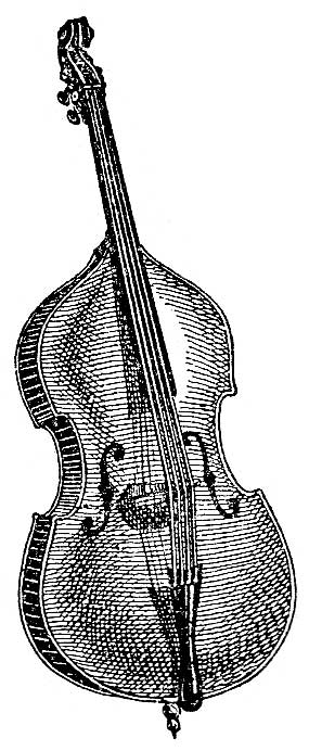 String Instruments - Image 6