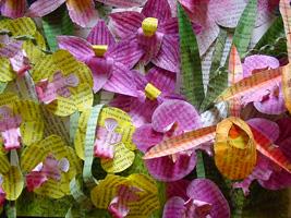 Handmade Paper Sculpture ~ Dream of Orchids