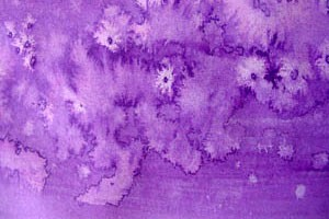 Salt Pattern ~ Karen's Whimsy
