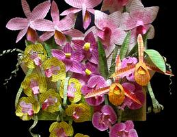 Handmade Paper Sculpture ~ Orchids