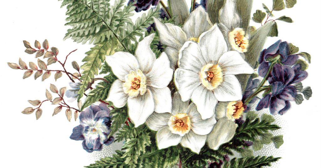 Drawings of Flowers