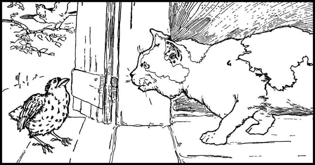 Kitten Coloring Pages
