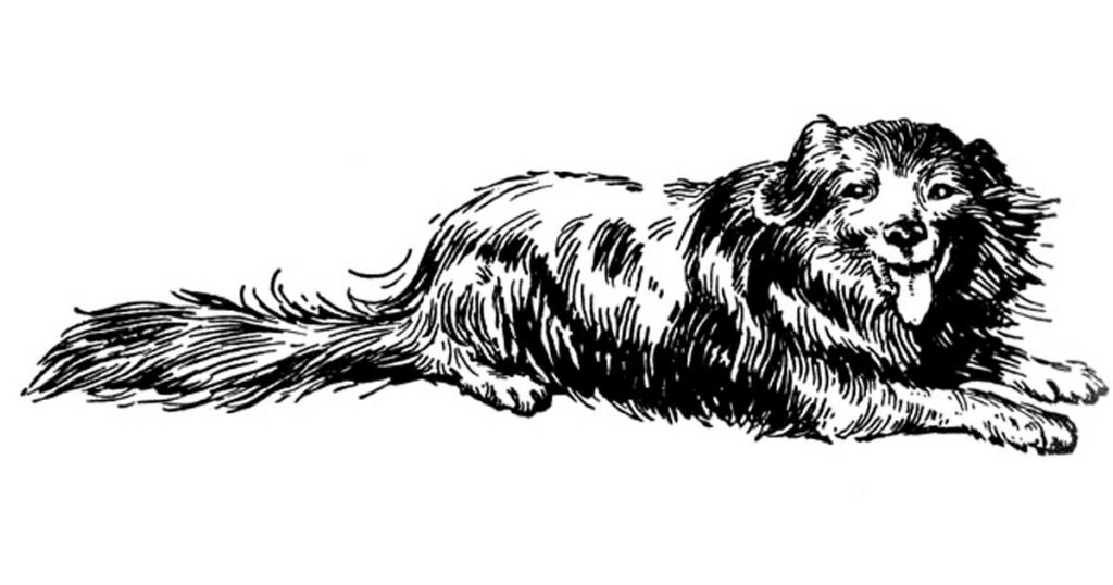Dog Clipart Images