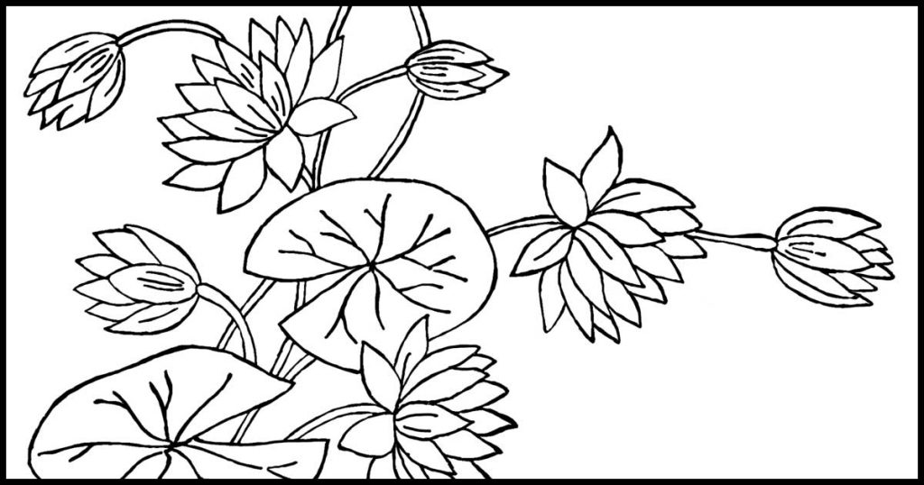Digital coloring page whimsical flowers. Don't worry be | Coloring ... | 538x1024