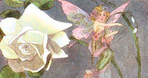 Beautiful Fairies