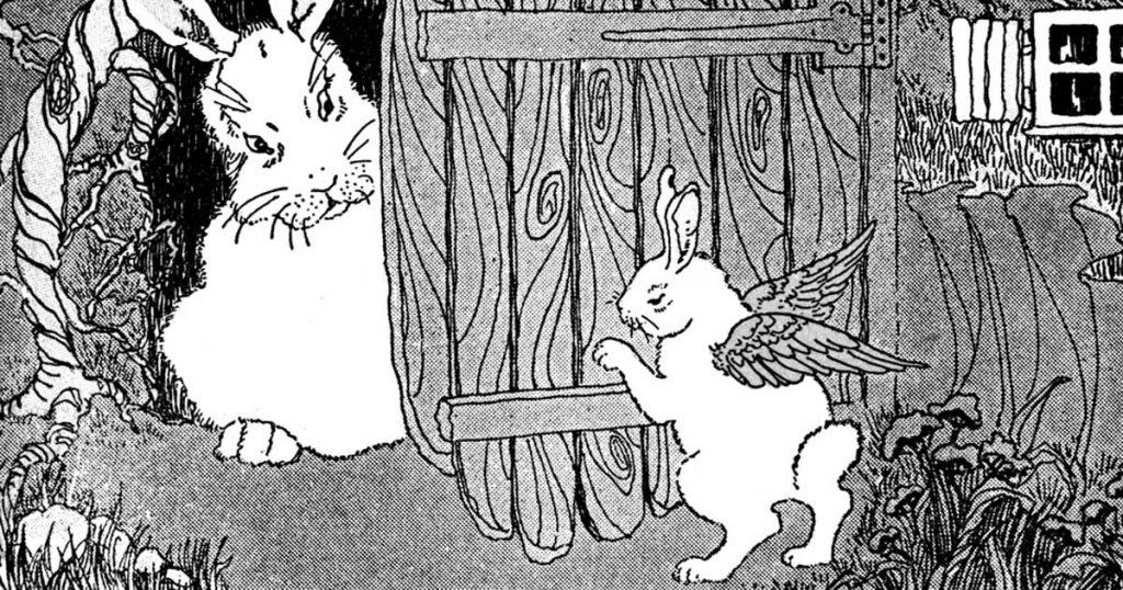 Cartoon Bunny
