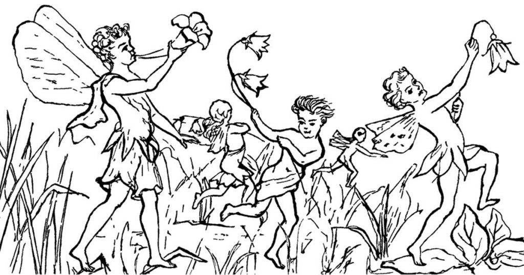 Fairies Illustrations