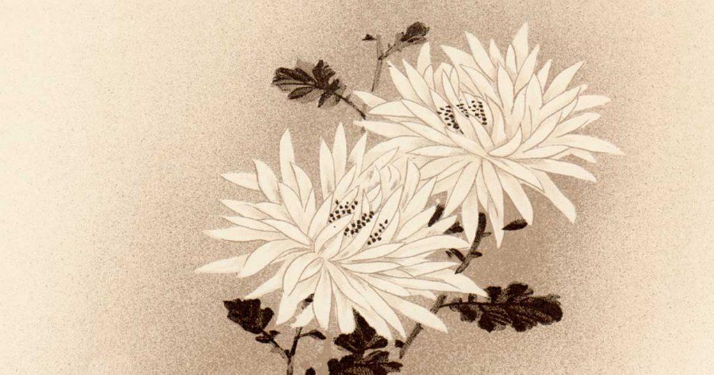 Symbols of Japanese